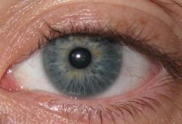 Eye Scan v1