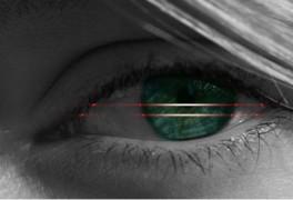 Eye Scan v2