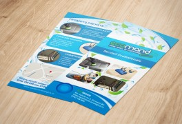 Flyer DL Spalatorie Ecologica Ecomand