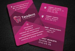 Identitate brand Teodent